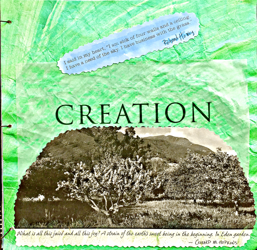 http://janieseltzer.com/wp-content/uploads/2017/03/Creation-A.png