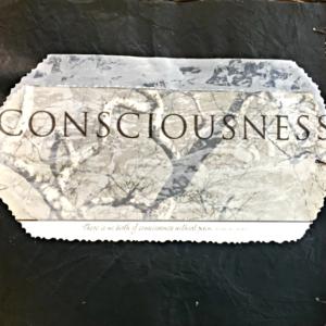 http://janieseltzer.com/wp-content/uploads/2017/05/ConsciousnessA-1-300x300.png