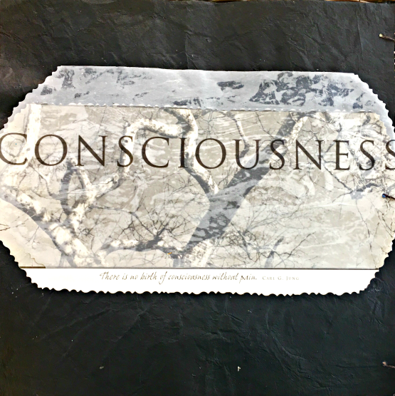 http://janieseltzer.com/wp-content/uploads/2017/05/ConsciousnessA-1.png