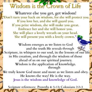 http://janieseltzer.com/wp-content/uploads/2017/05/Wisdom-words-A-1-300x300.png