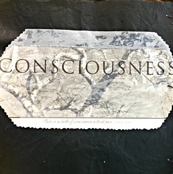 https://janieseltzer.com/wp-content/uploads/2017/05/ConsciousnessA-1.png